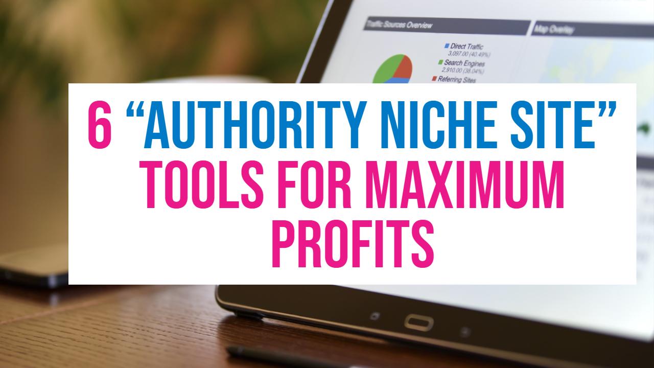 authority niche site