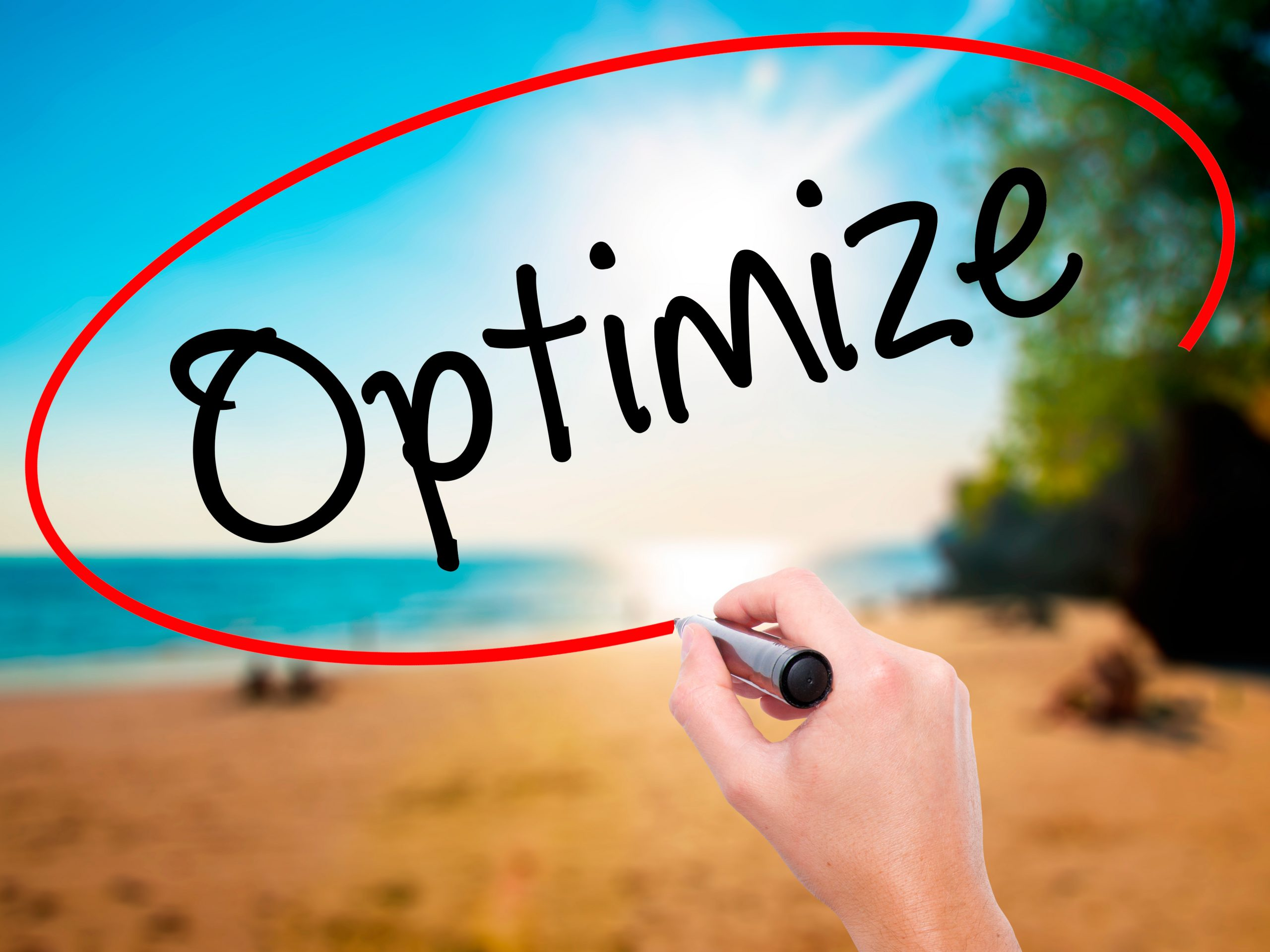 Optimize Your Blog Posts for Fast SEO