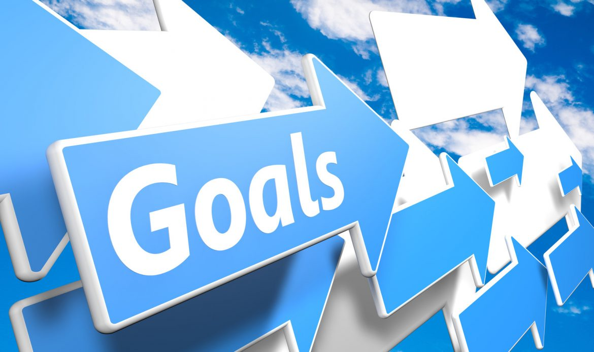 Goals help define customer avatar